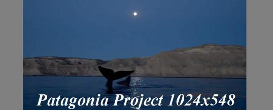 Neue Webseite für Patagonia Project